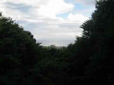 子どもたちが宿泊する棟から見える景色は、まさに「海のみえる森」.JPG